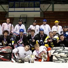 Lední hokej VIII