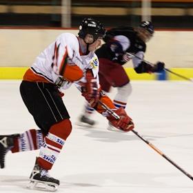 Lední hokej VII