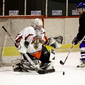 Lední hokej IX