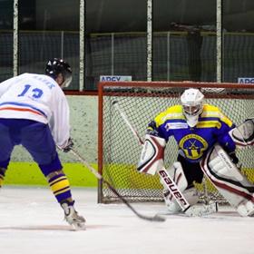 Lední hokej X