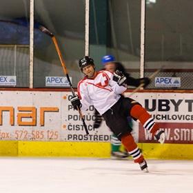 Lední hokej XI