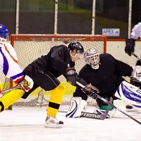 Lední hokej XII