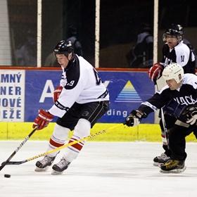 Lední hokej XVII