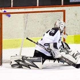 Lední hokej XVIII