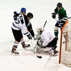 Lední hokej XXI
