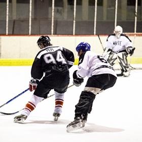 Lední hokej XXVI
