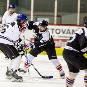 Lední hokej XXIX