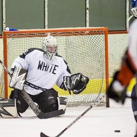 Lední hokej XXXI