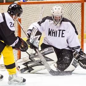Lední hokej XXXII