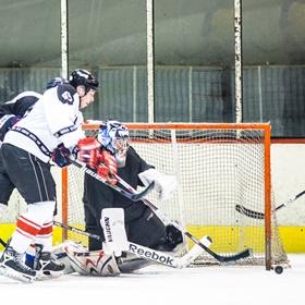Lední hokej XXXIV