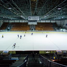Nedělní hokej 30.3.2014