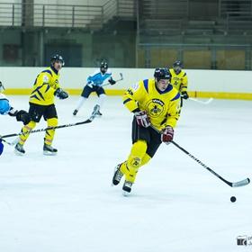 AHL 15-16: HC Včelary - HC Piráti Lagunators