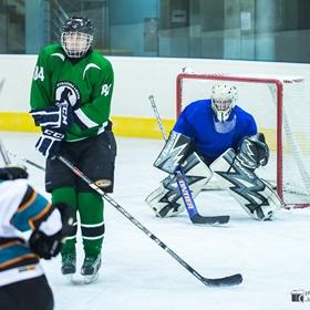 AHL 15-16: HC Ostrožská Lhota - HC Sharks Mistřice