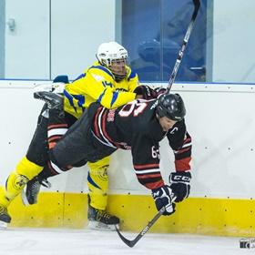 AHL 16-17: HC Včelary - HC Scorpions