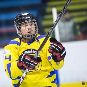 AHL 16-17: HC Včelary - HC Piráti Lagunators