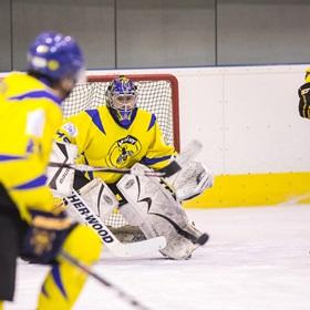AHL 17-18: HC Včelary - HC Scorpions