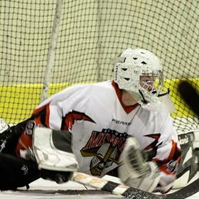 Lední hokej VI