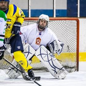 AHL 18-19: HC Včelary - HC Ostrožská Lhota