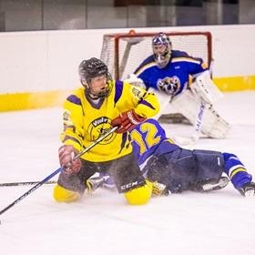 AHL 18-19: HC Včelary - HC Piráti Lagunators, 2. ČF