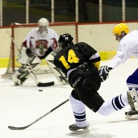 Lední hokej V