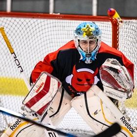 SAHL 19-20: HC Včelary - HC Devils #12