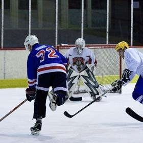 Lední hokej III