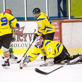 AHL 2013-14