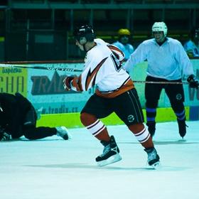 Lední hokej I